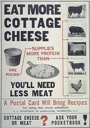 Meatless Monday realfoodinarealworld.com